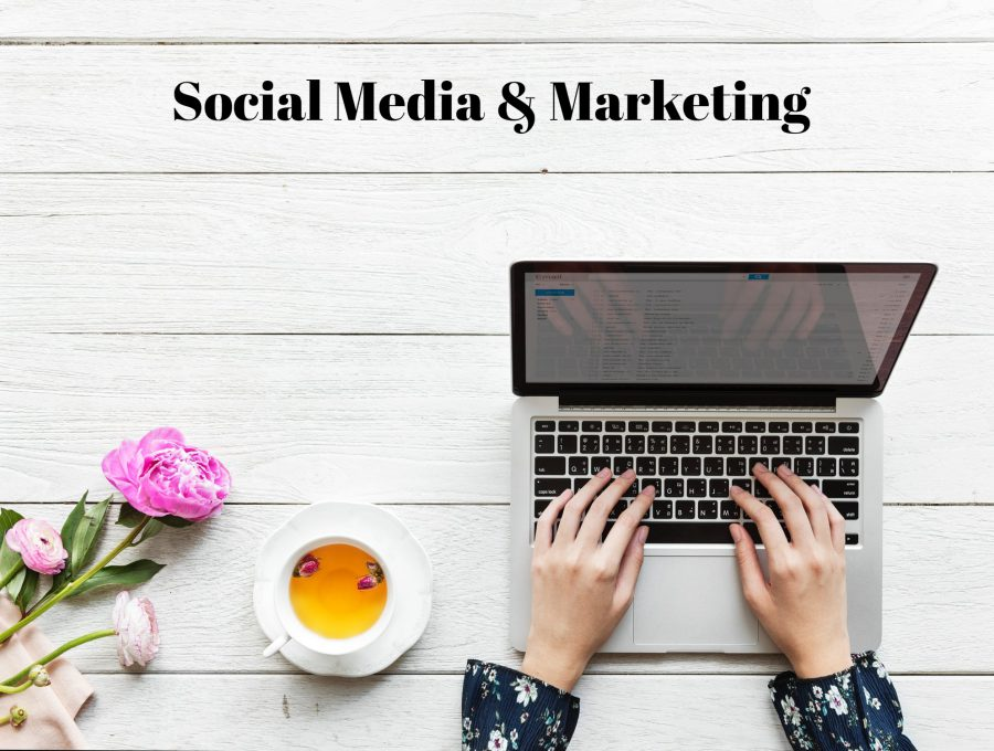 social media and marketing virtual assistant